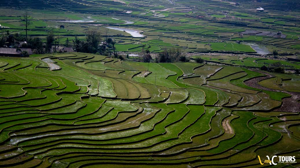 Chez habitant Mu Cang Chai Yen Bai agence de voyage au vietnam