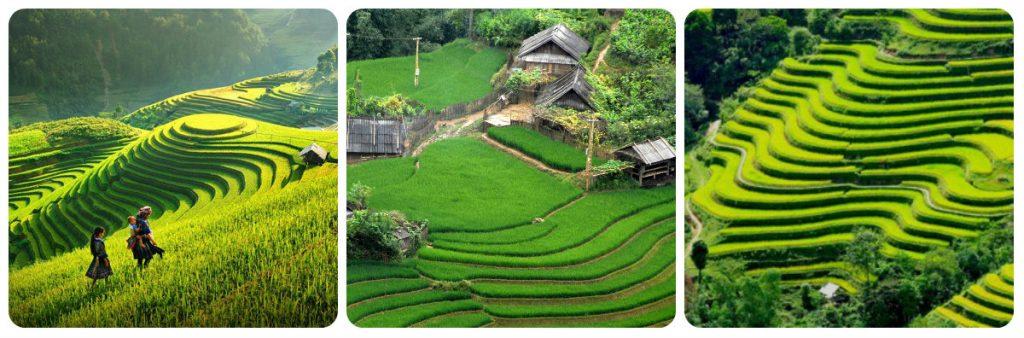 quand partir au vietnam - climat et météo - meilleure période pour aller au vietnam