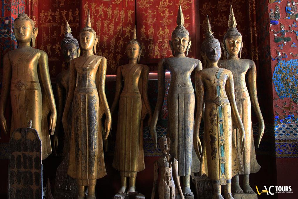 Laos-sauvage